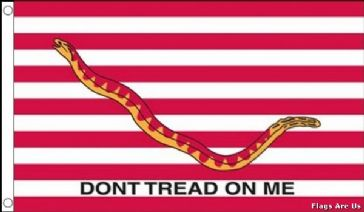 The First Navy Jack